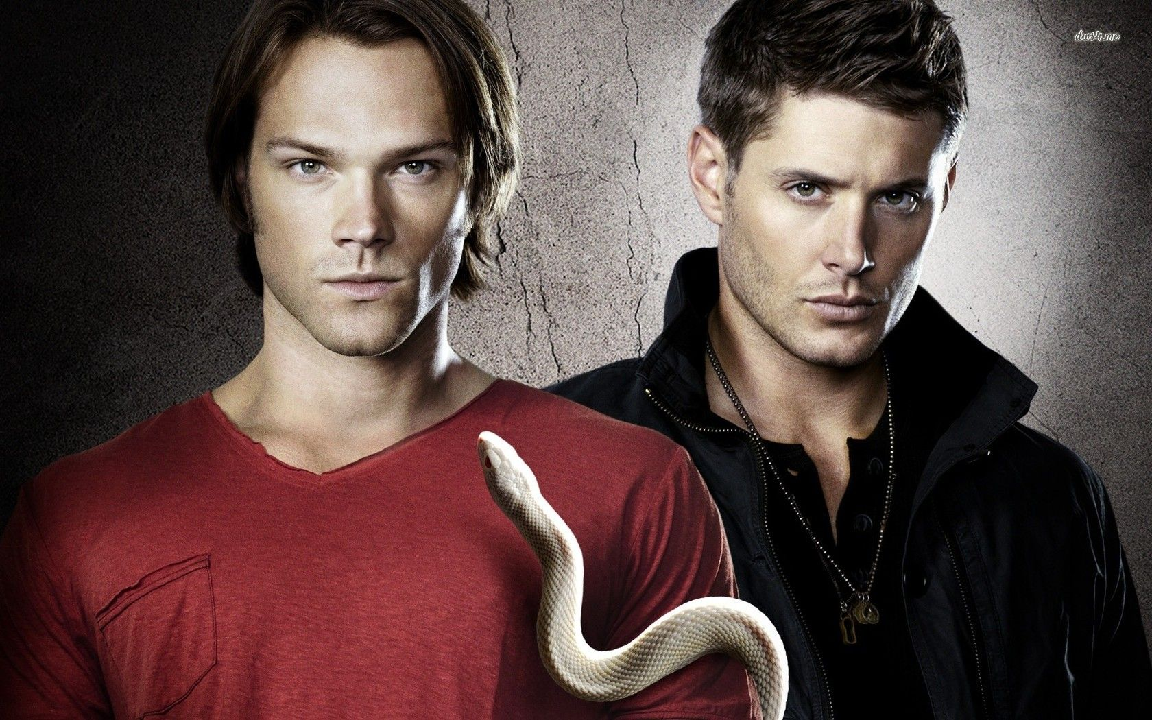 Sam and Dean Winchester Supernatural wallpaper TV Show