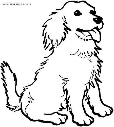 1000 images about puppy bowl on pinterest coloring pages