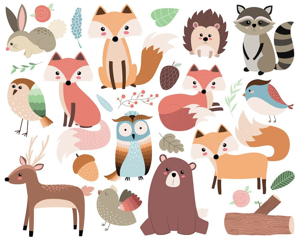 Woodland Forest Animals Clip Art 26 300 DPI Vector, PNG