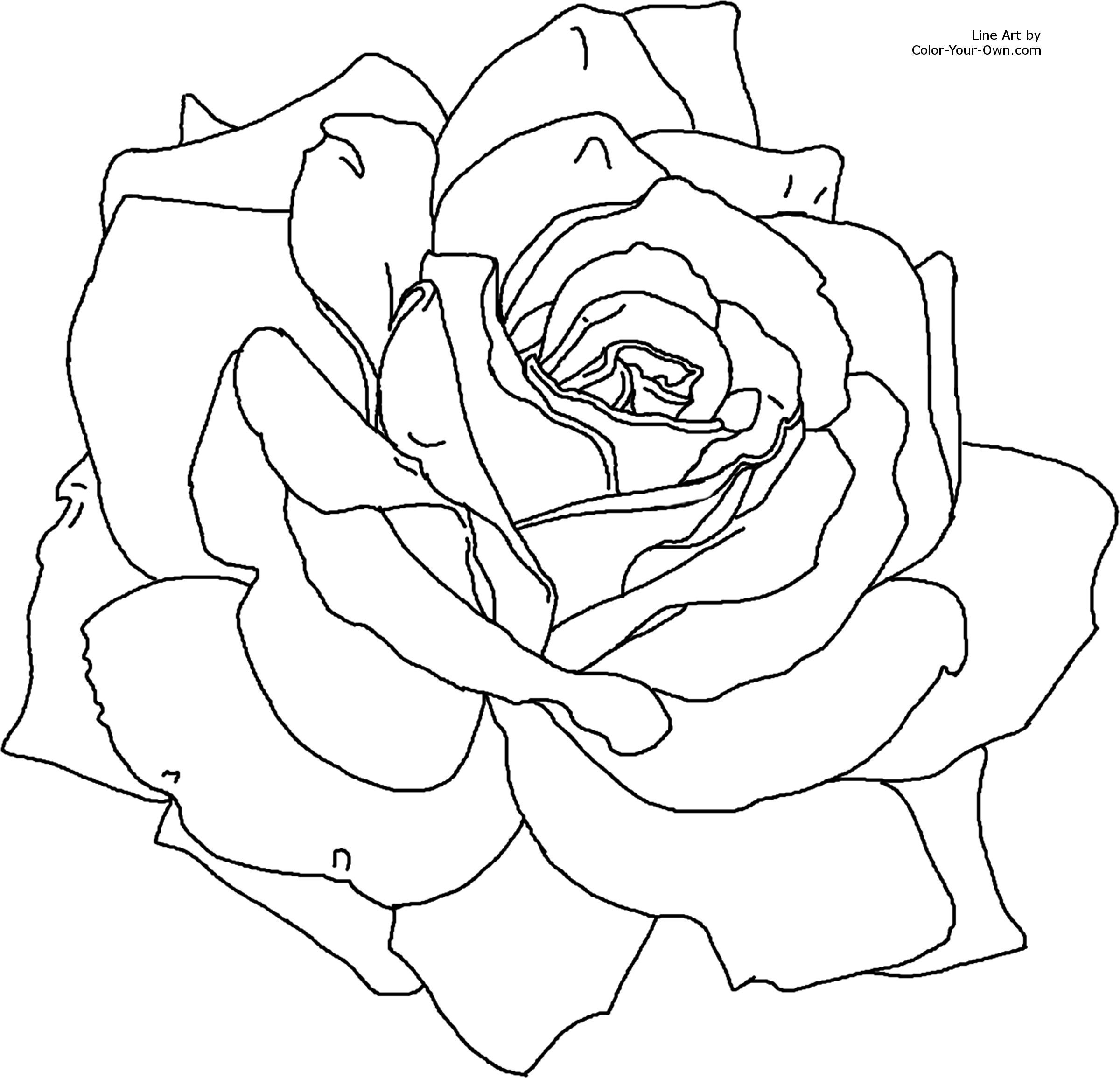 flower Page Printable Coloring Sheets For the 8.5 x 11