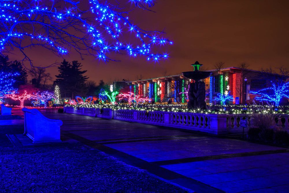Detroit Zoo Wild Lights DTW Pinterest Detroit zoo