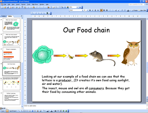 food chain Week 2 & 3 C2W3 Pinterest Food chains