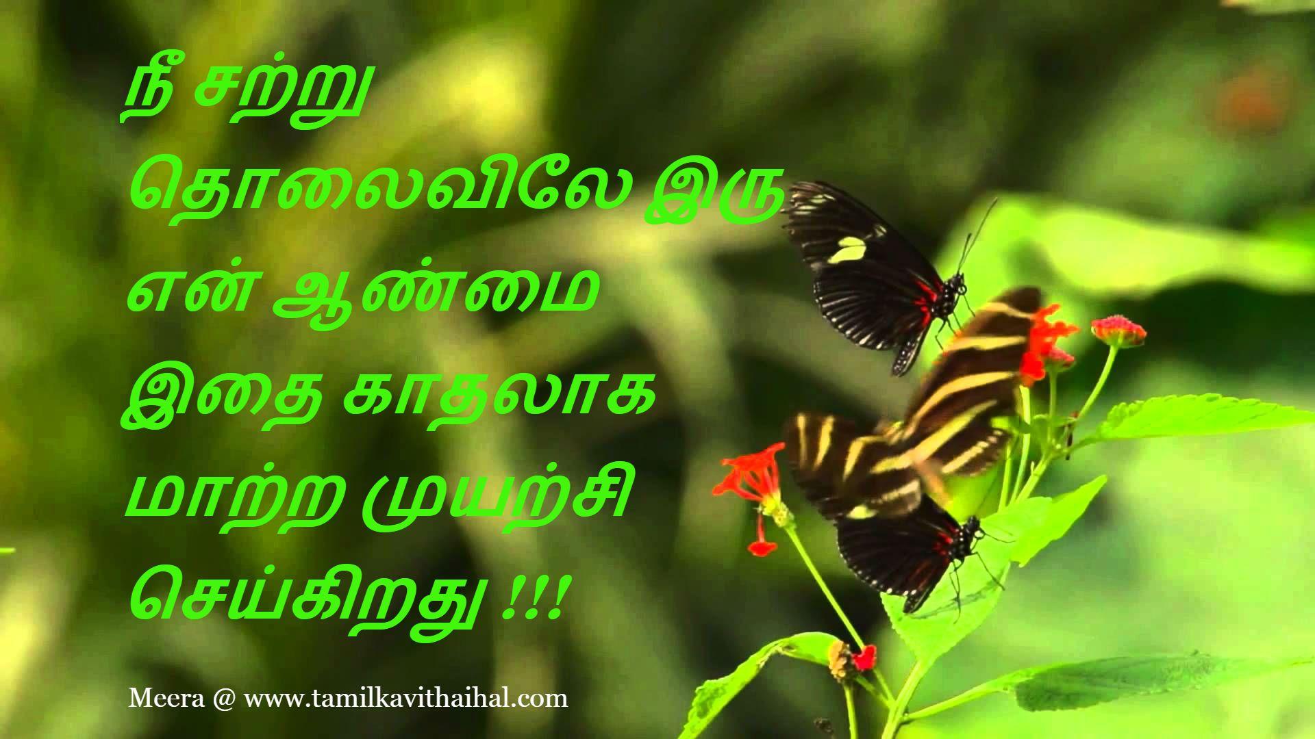 kavithai in tamil about love boyfriend girlfriend meera