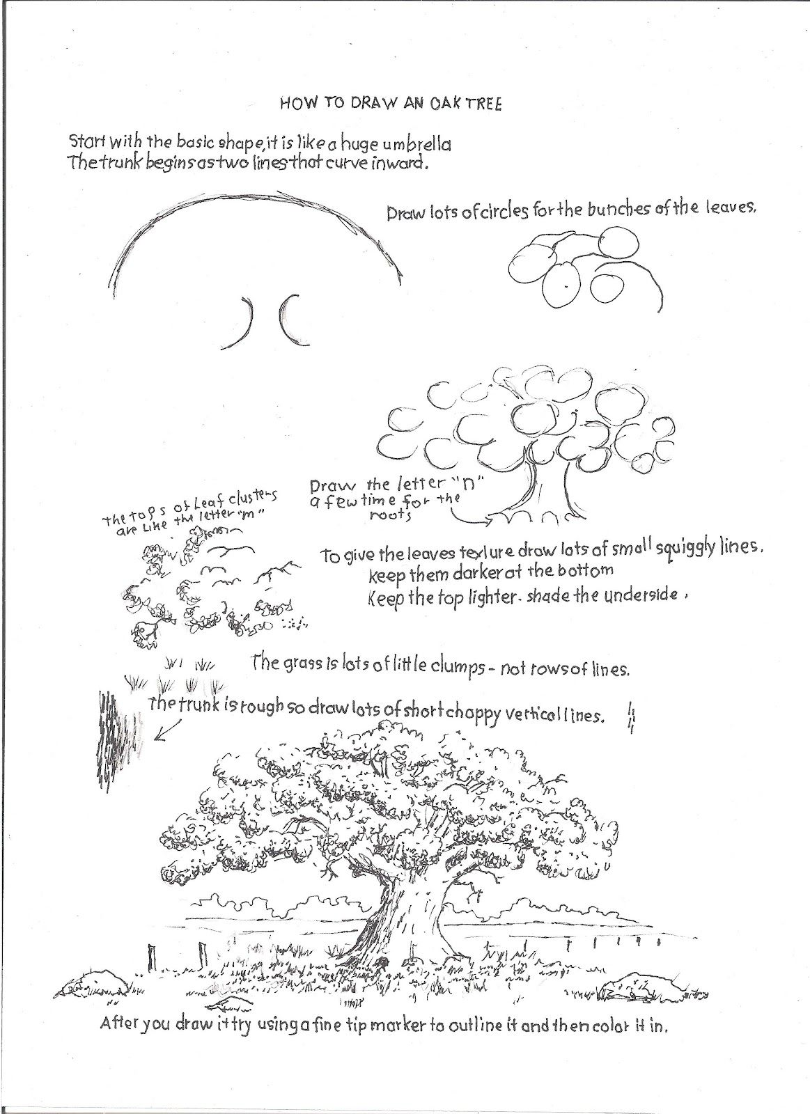 How To Draw Worksheets For The Young Artist How To Draw An Oak Tree Drawing Worksheet For