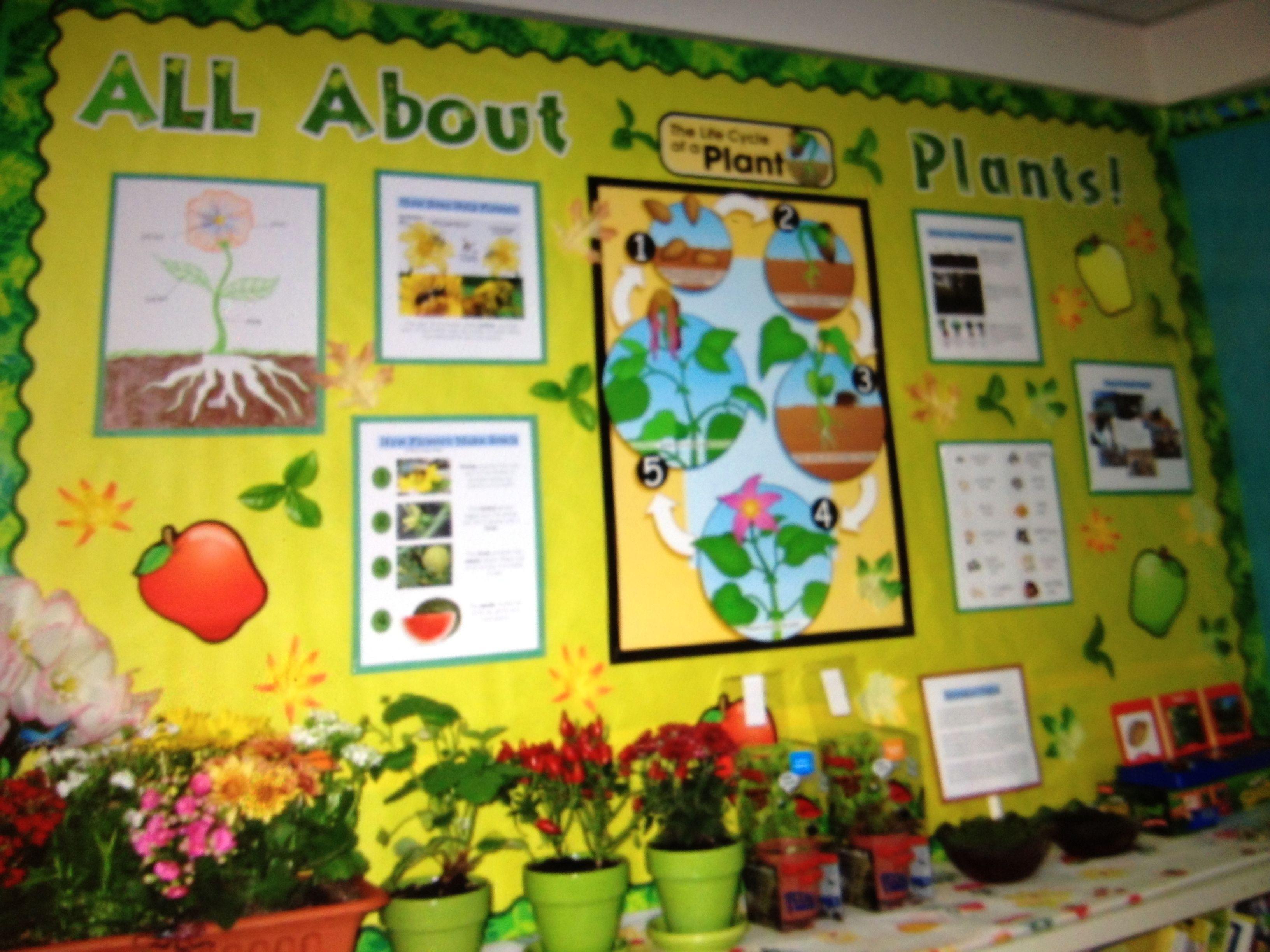Science Worksheet For 3rd Grade Plants