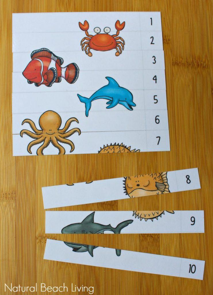 The Best Ocean Animals Preschool Activities and Printables