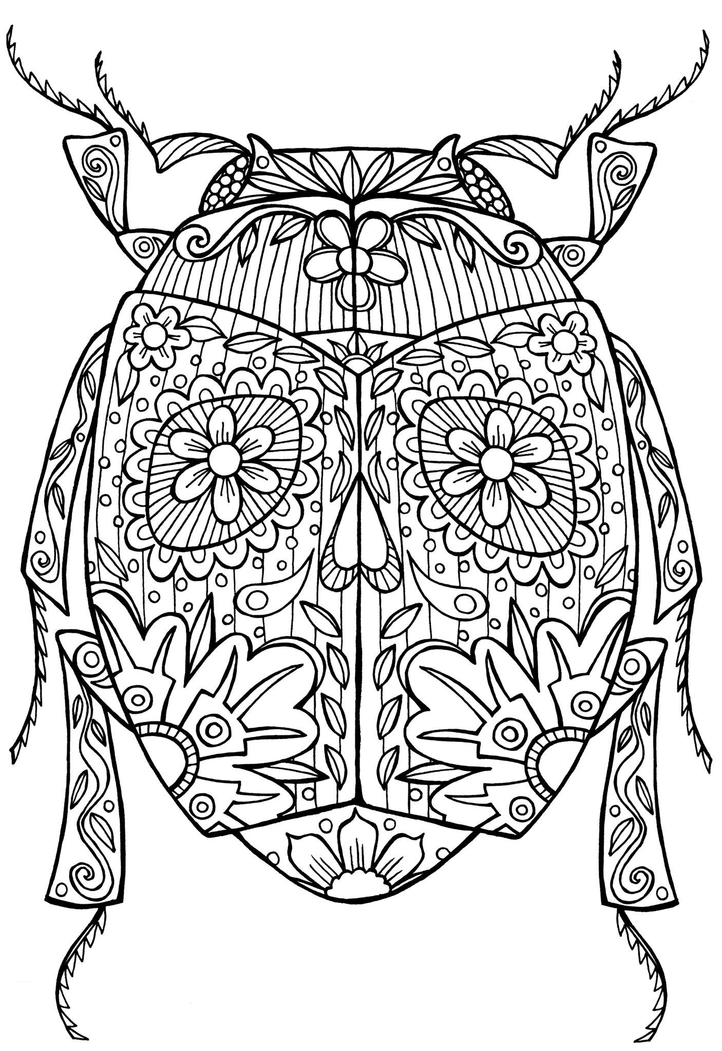1000 images about coloring for adults animals on pinterest