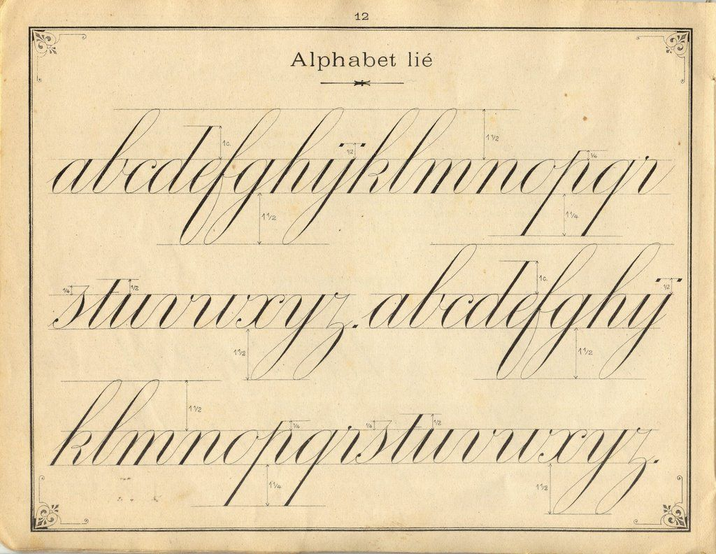 French Penmanship Lower Case Letters Fine I Like Cursive And Good Penmanship If Only Mine