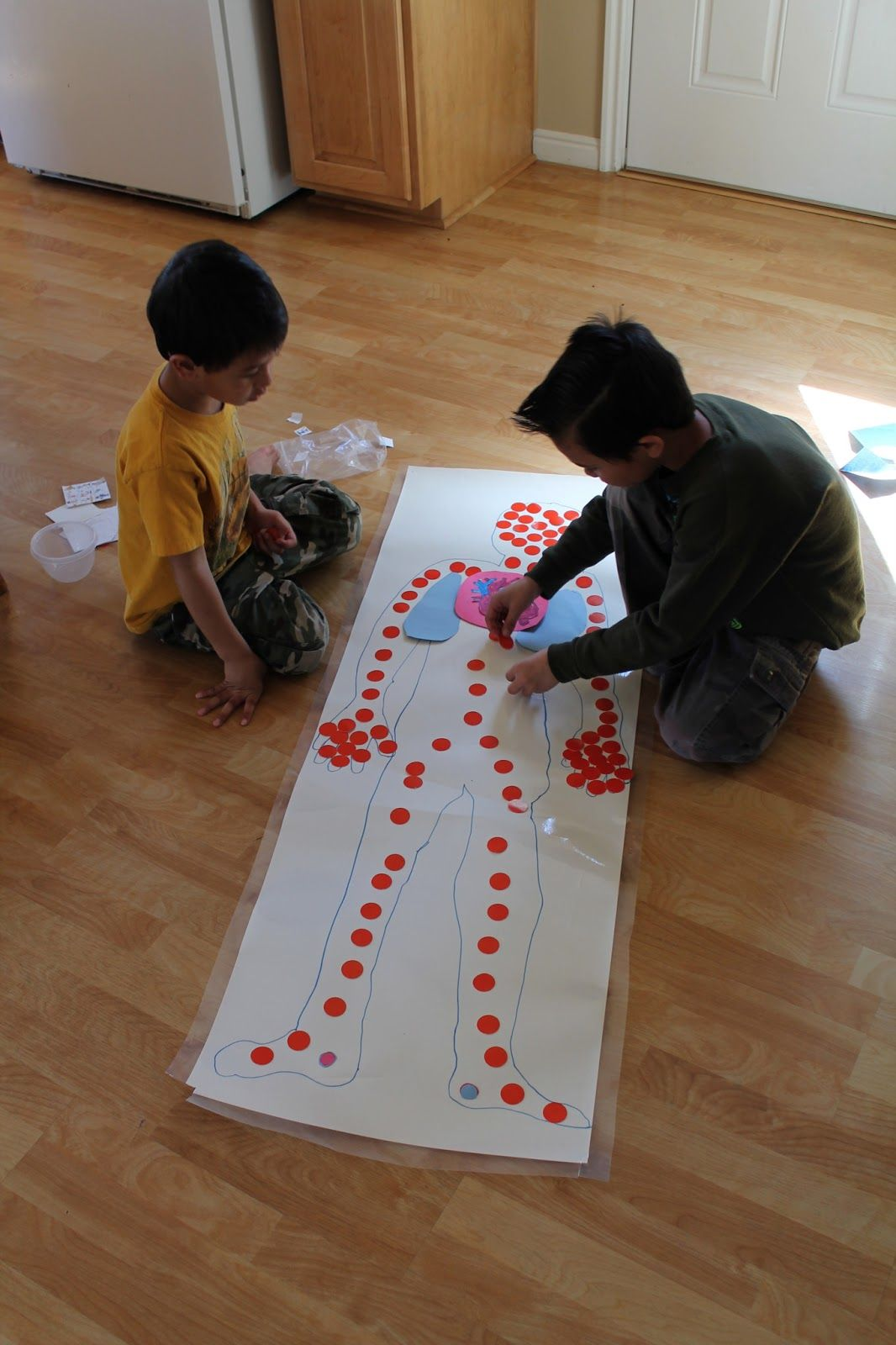 From The Mrs 8 Cardiovascular System Activities For Kids