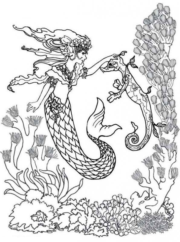 Majestic mermaid and Seahorse difficult adult coloring