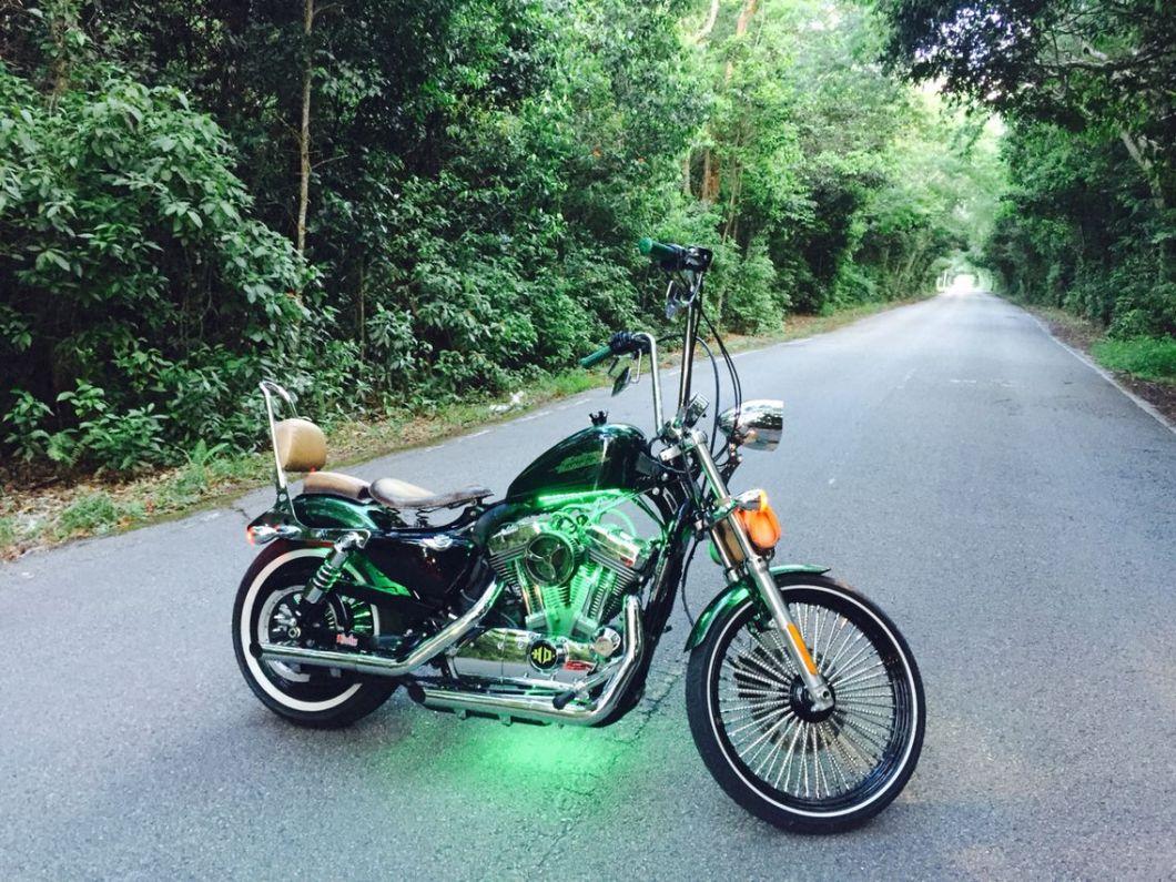 17 Best Images About Sportster 72 Bobber Harley Davidson On