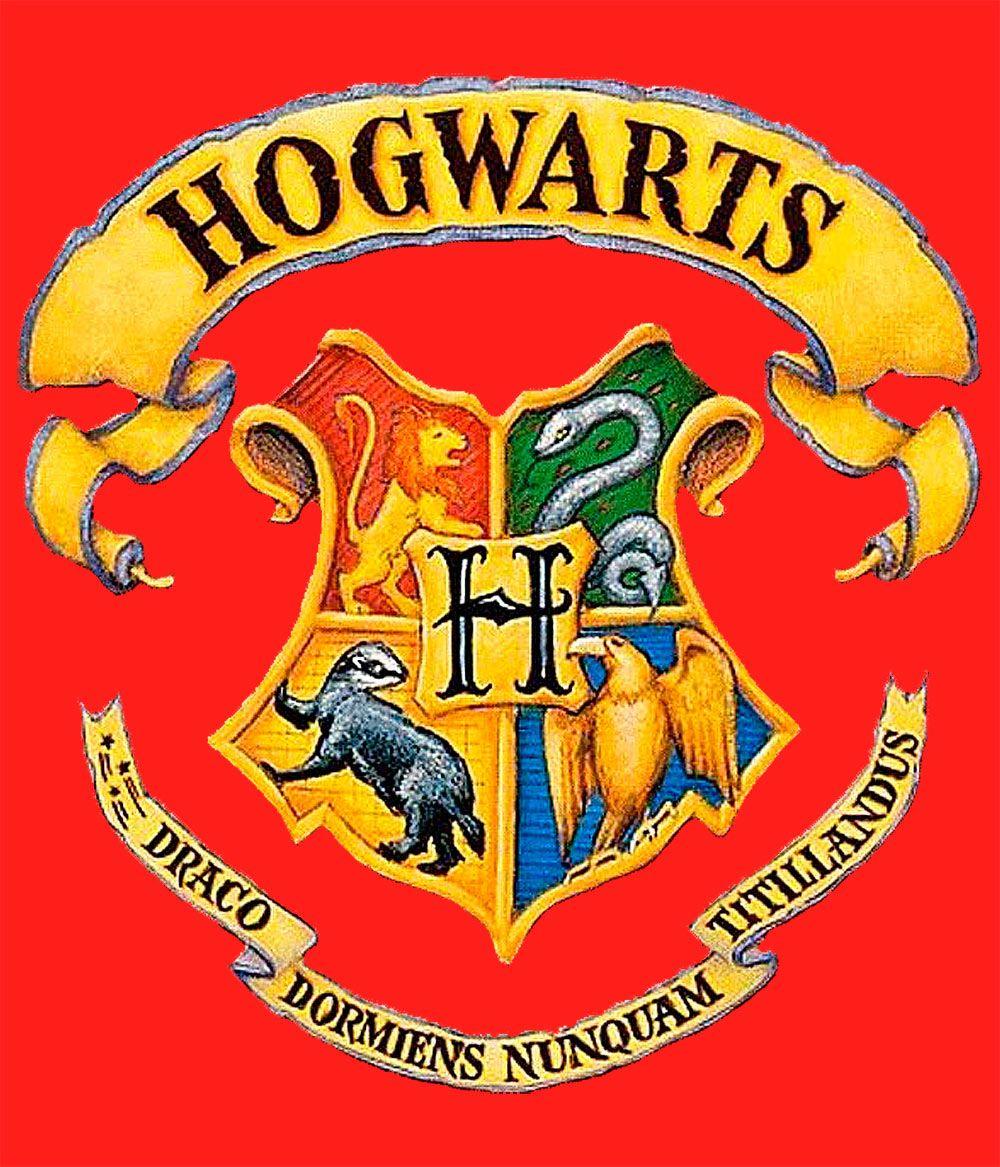 Camiseta Harry Potter logo Hogwarts Hogwarts, Harry