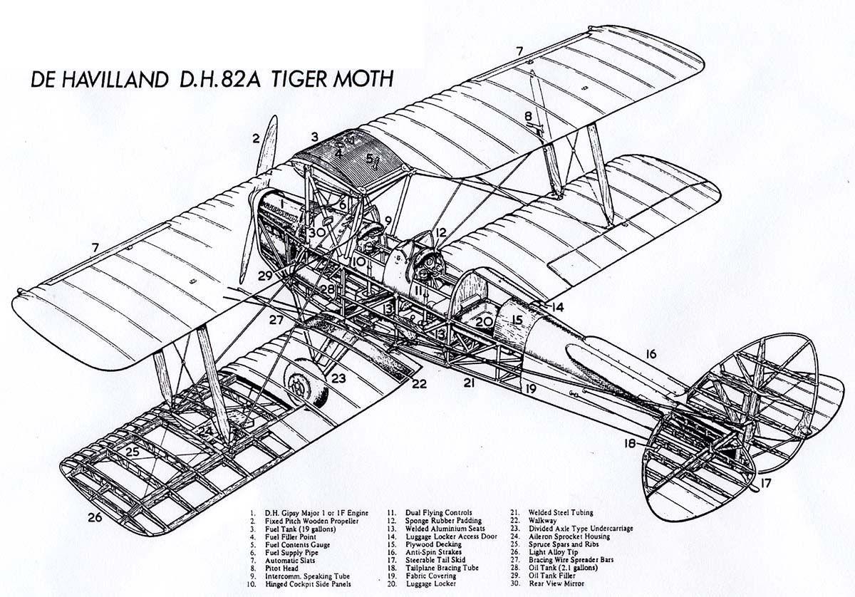 De Havilland D H 82a Tiger Moth Cutaway