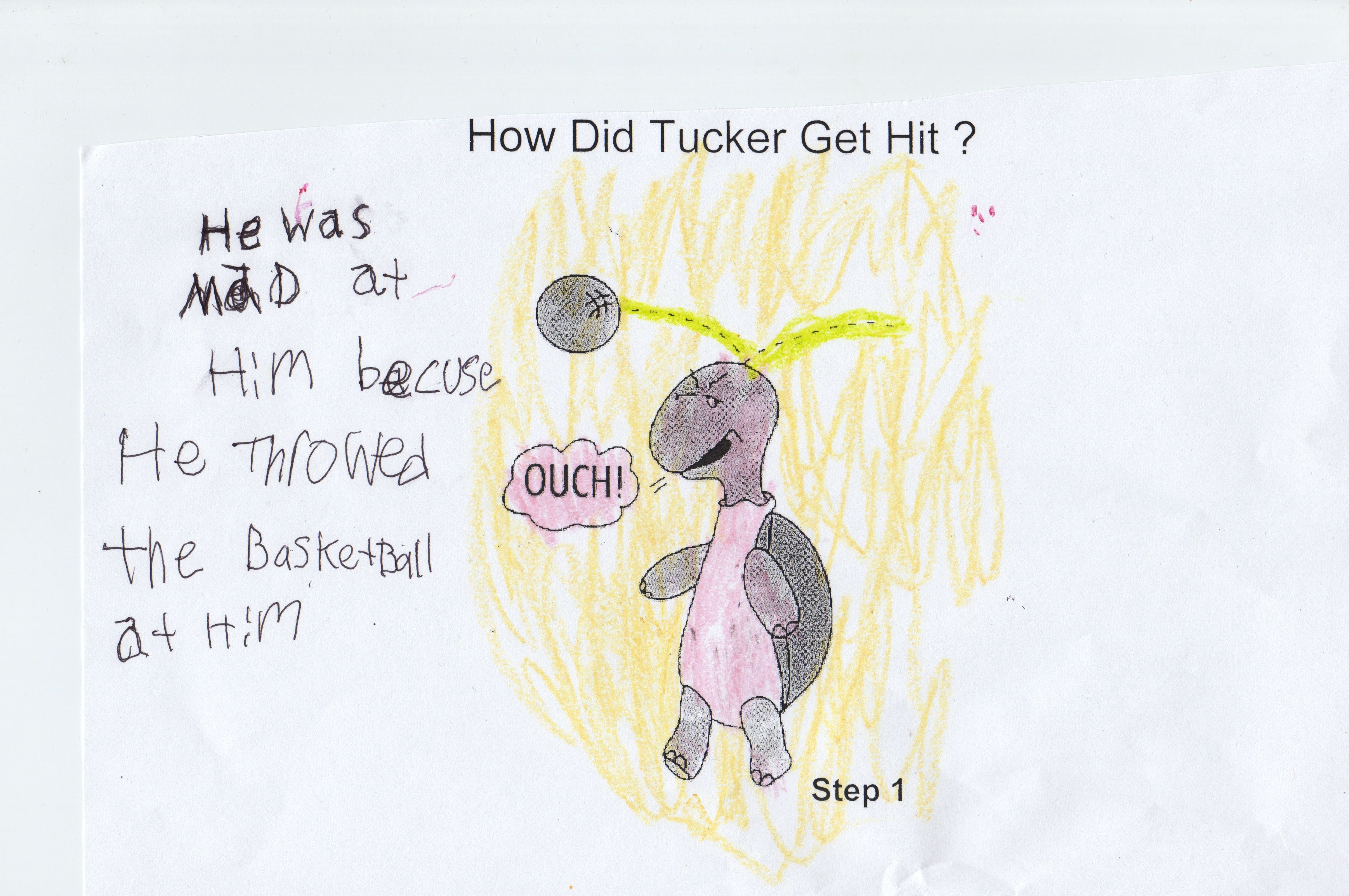 Have Students Draw And Describe How Tucker Turtle Got Hit