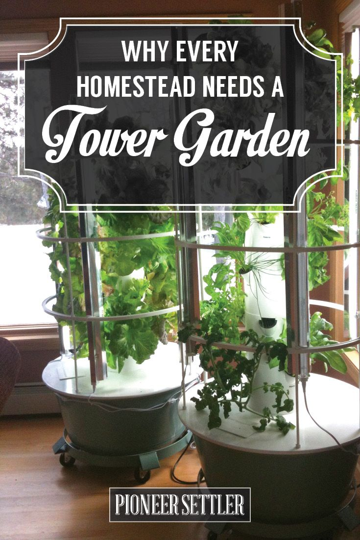 Why Every Homestead Needs A Tower Garden Indoor