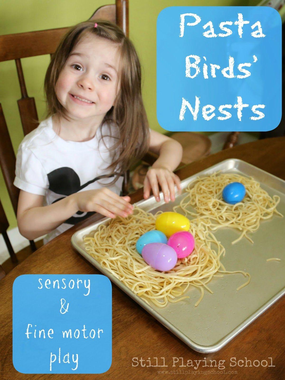 Sensory Nest Building