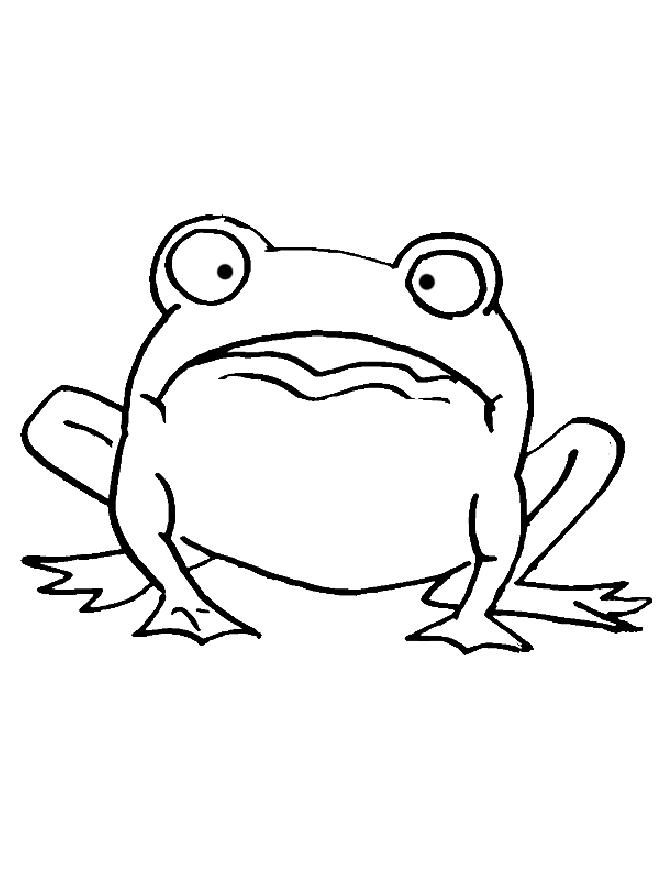 coloring frogs and animal coloring pages on pinterest