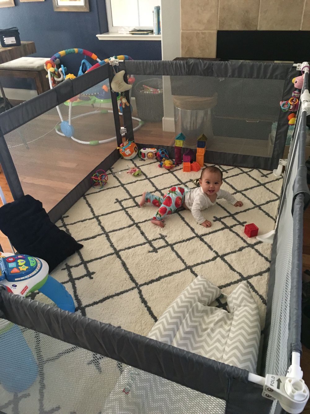 The ultimate playpen / play yard/ baby gate / living room