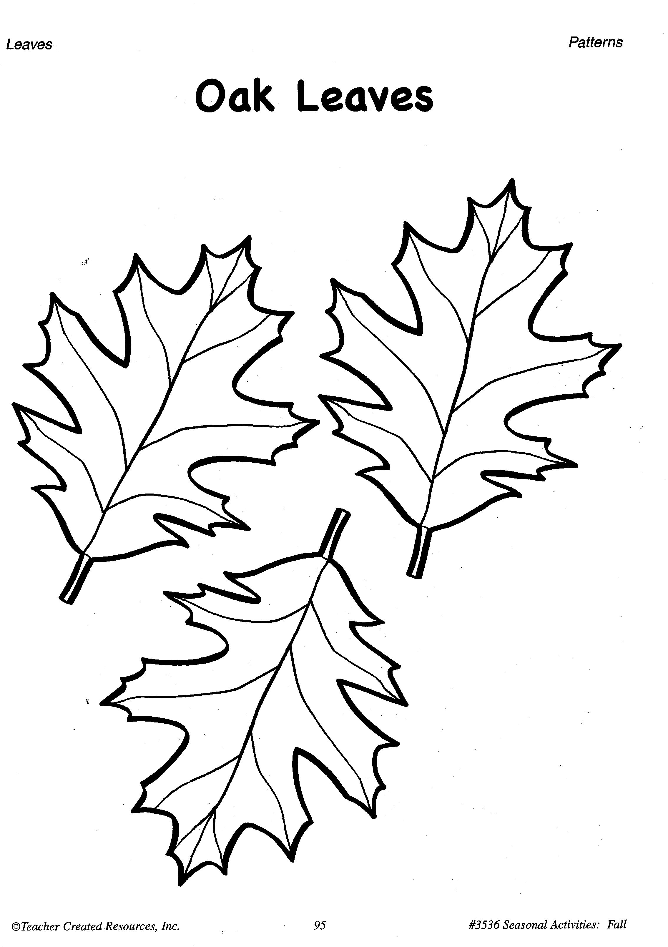 Printable Fall Leaves Patterns A Sample From The Teacher