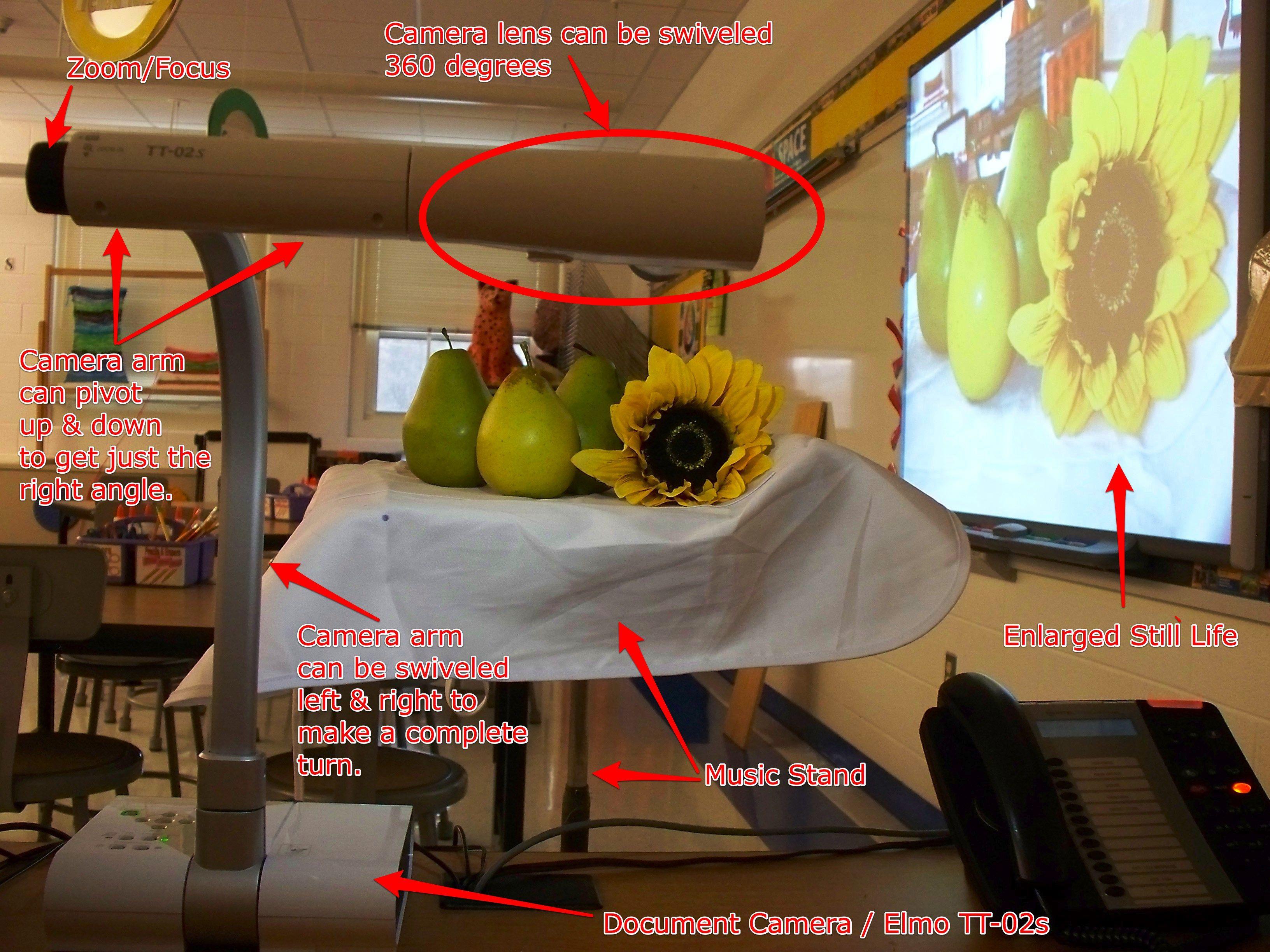 Still Life Drawing E Doc Camera To Arrange The