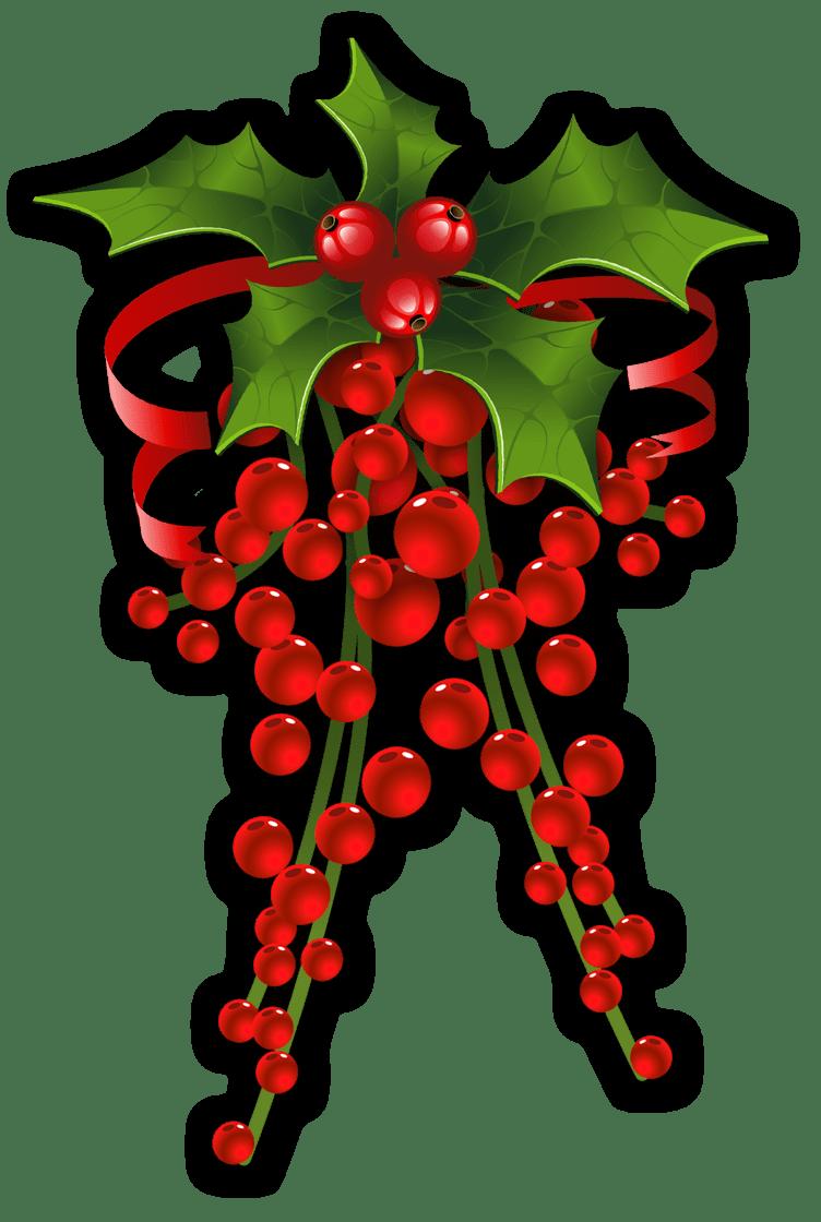 CHRISTMAS HOLLY * CLIP ART CHRISTMAS 3 CLIPART