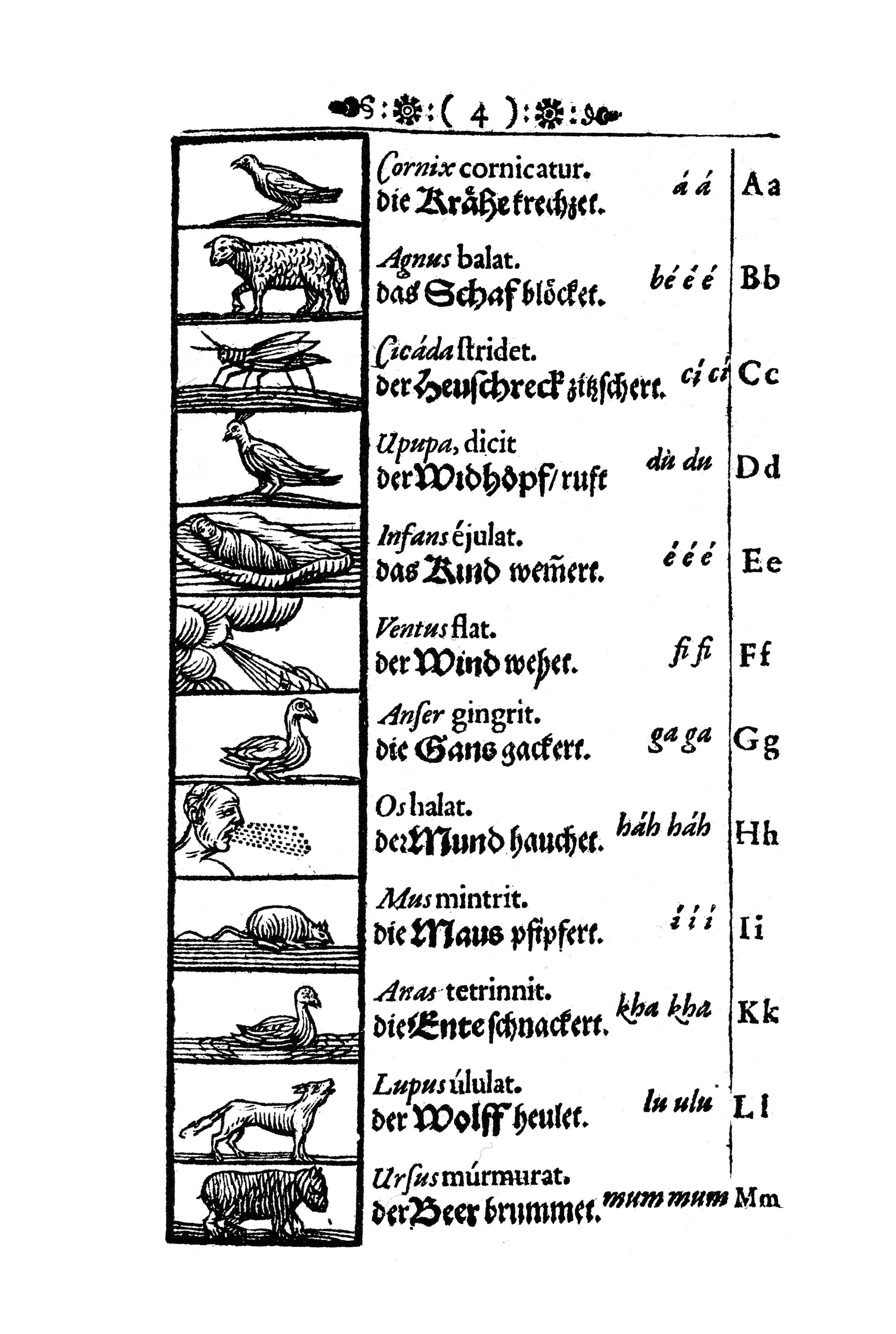 Johan Amos Comenius Alias Jan Amos Komensk Orbis Pictus
