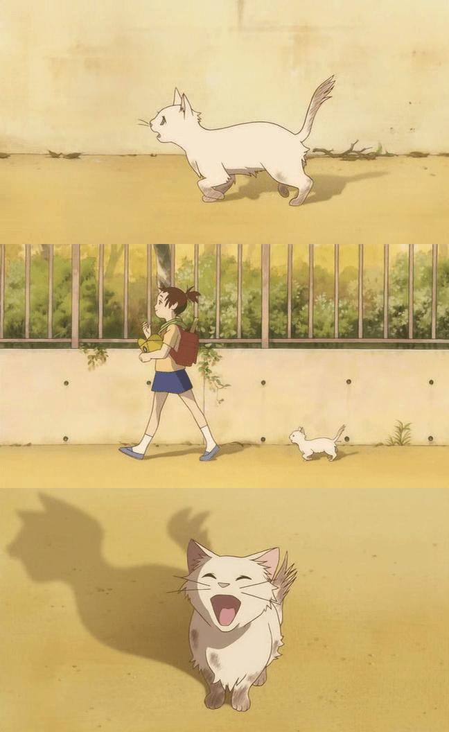 Anime and Manga Studio ghibli, Studio and Cat