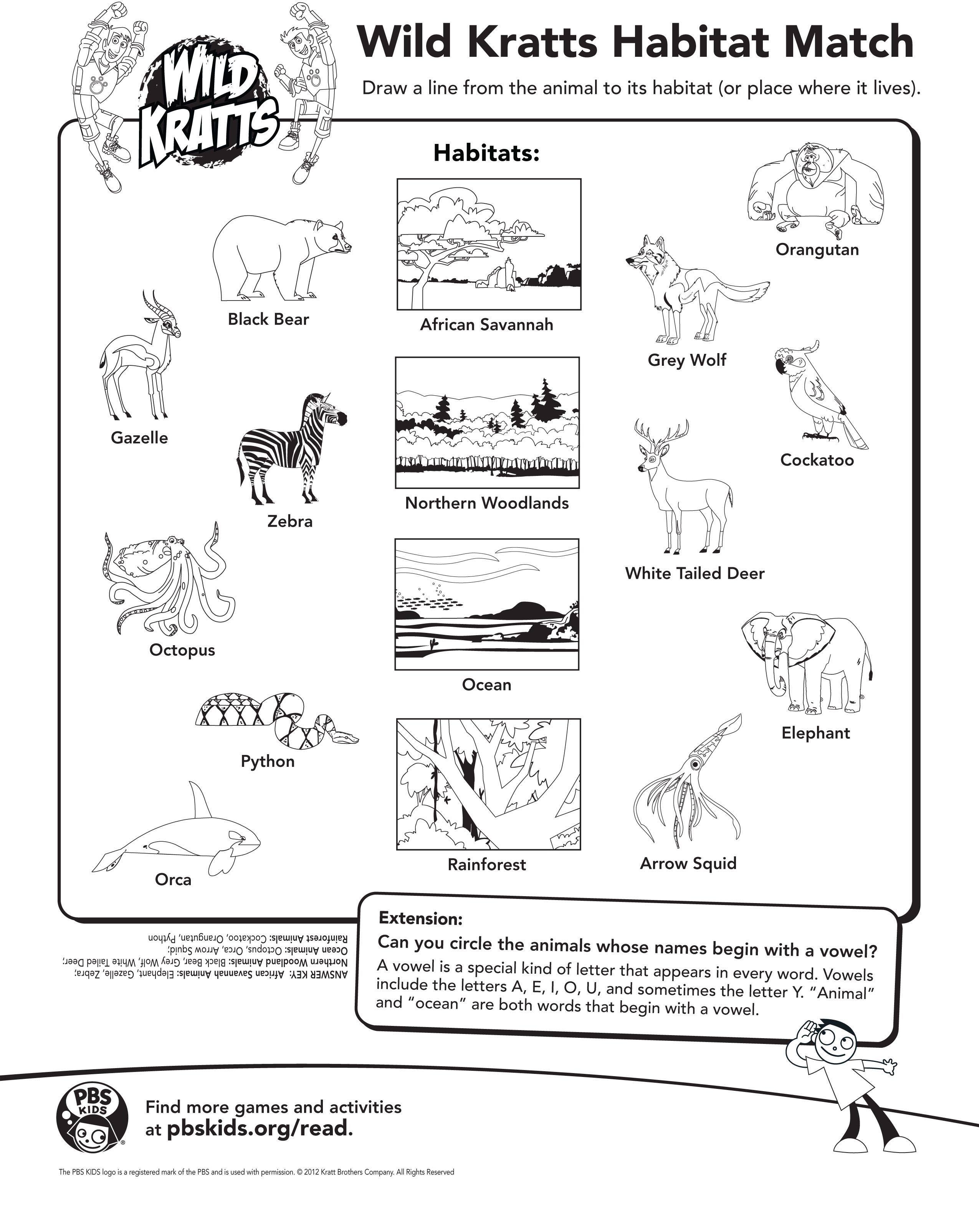 Draw A Line From The Animal To It S Habitat Wild Kratts
