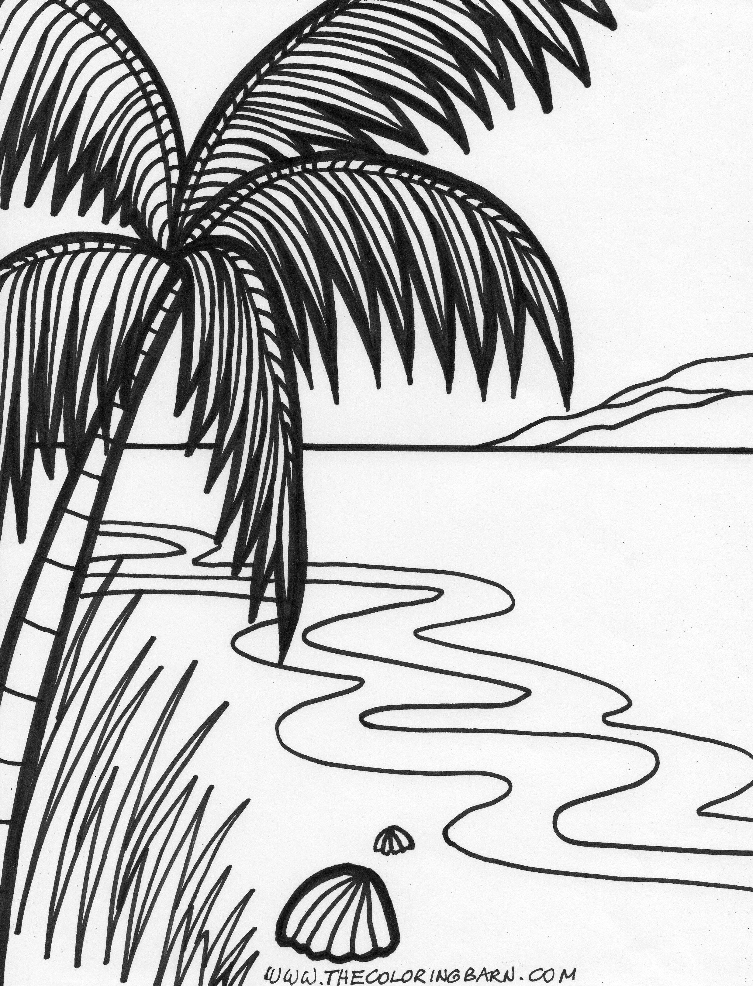 coloring pages tropical and coloring on pinterest