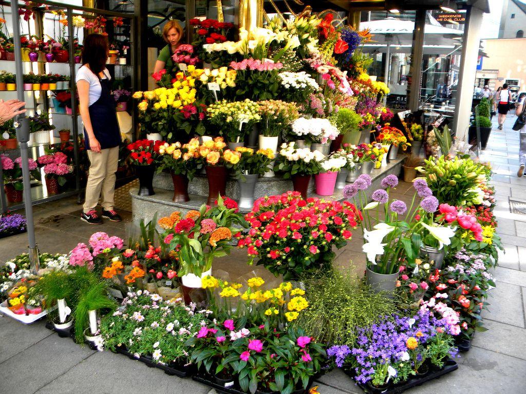 Flower Shop (21) Flower shop Pinterest Flower shops