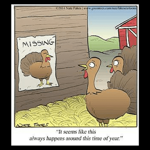 A little postThanksgiving funny! Hope you all are having