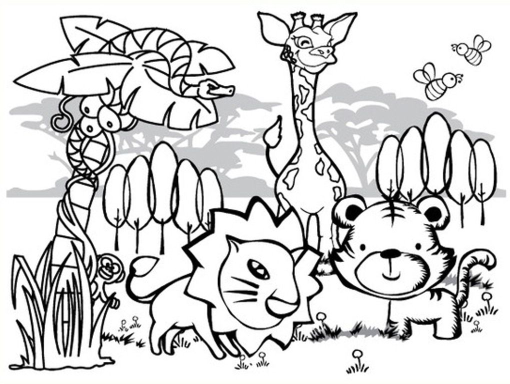 Rainforest Coloring Pages for Kids Collection Printable