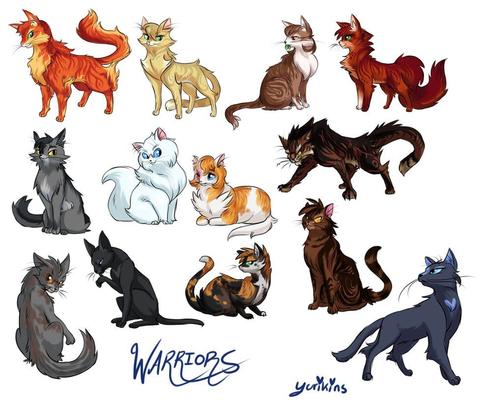 I drew a bunch of warrior cats. I wanted to do like, the