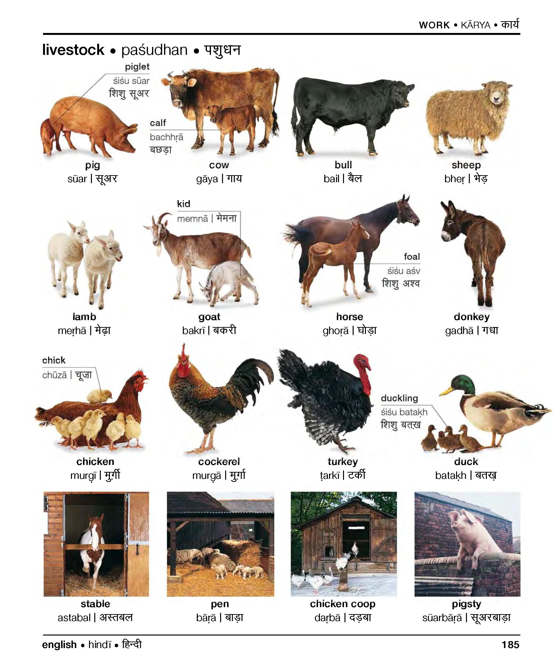 Farm Animals in Hindi Hindi Universiteit Leiden; आज