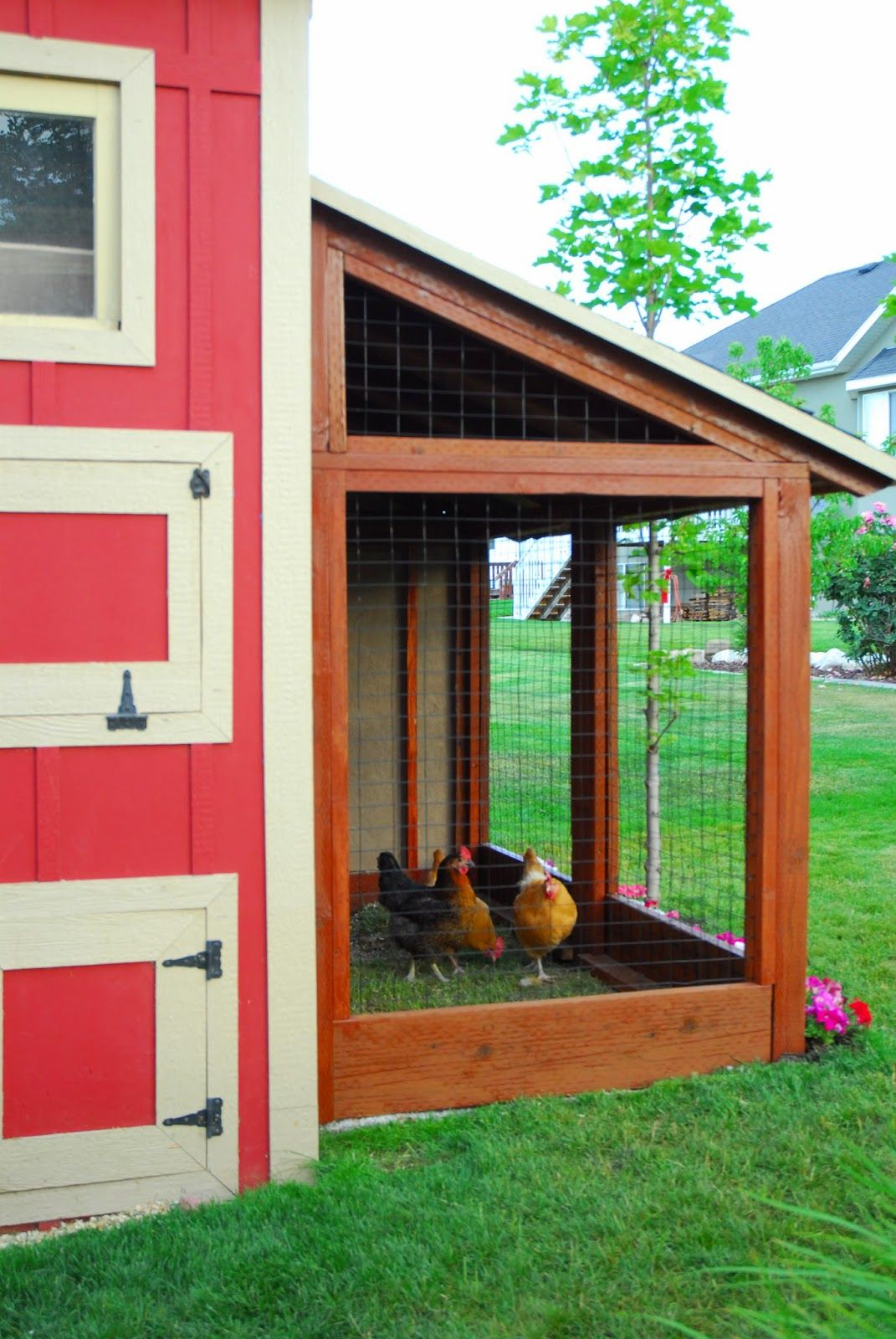 Diy storage shed with chicken coop and chicken run by