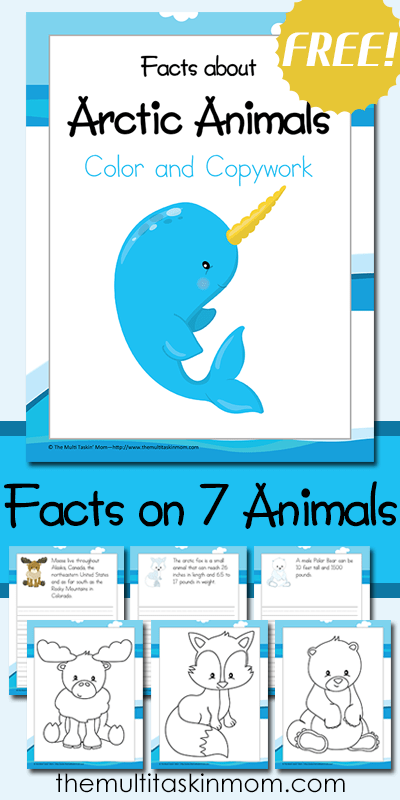 Color and Copywork Facts about Arctic Animals Arctic