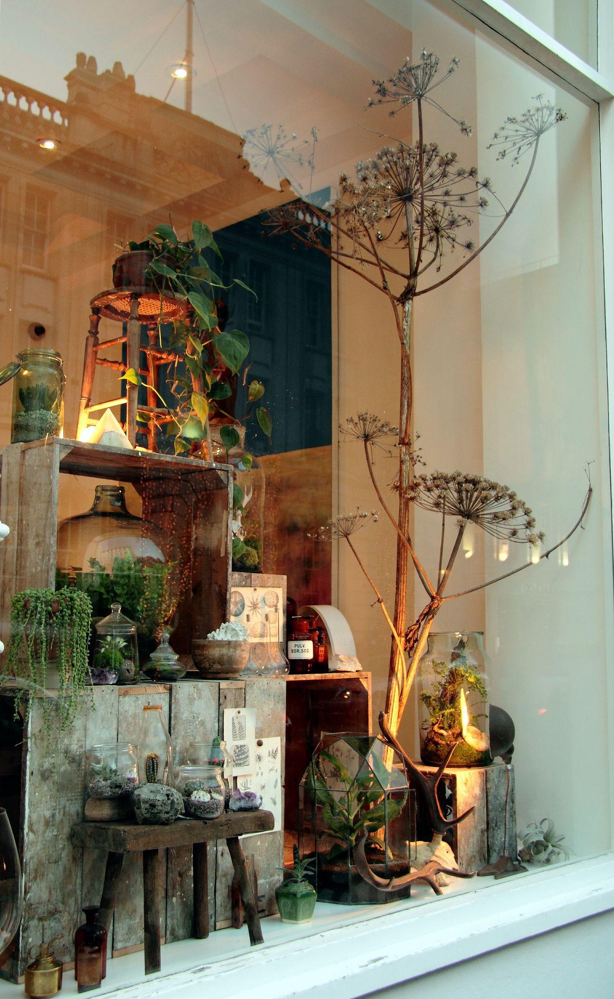 Hermetica London Window Display Revamp Animal skulls and