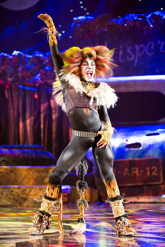 Rum Tum Tugger the rock star Cats Musical stuffs