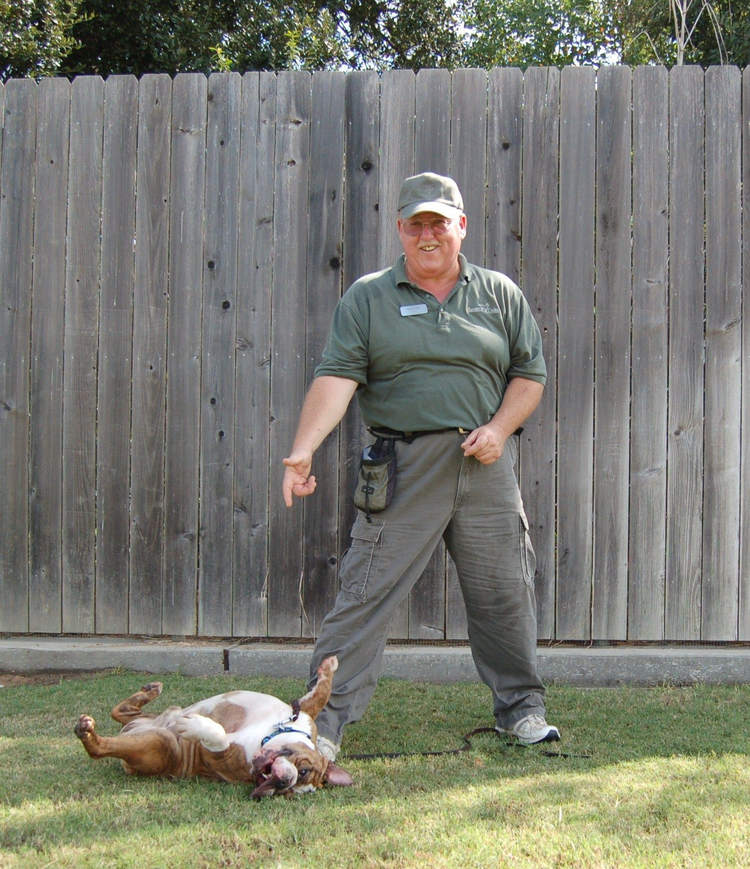 17 Best images about Dog Training on Pinterest