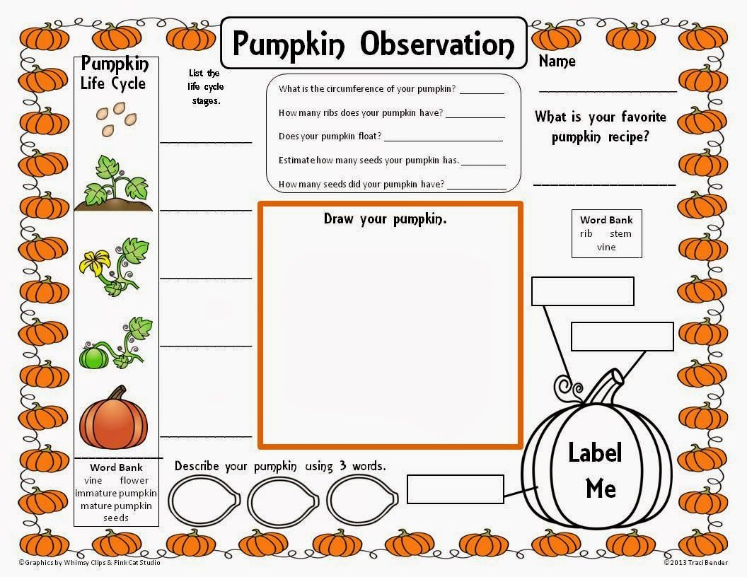 Pumpkin Science Printable Circumference