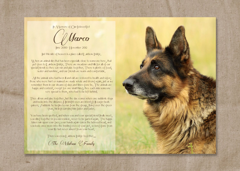 Rainbow Bridge Poem For Dogs Printable