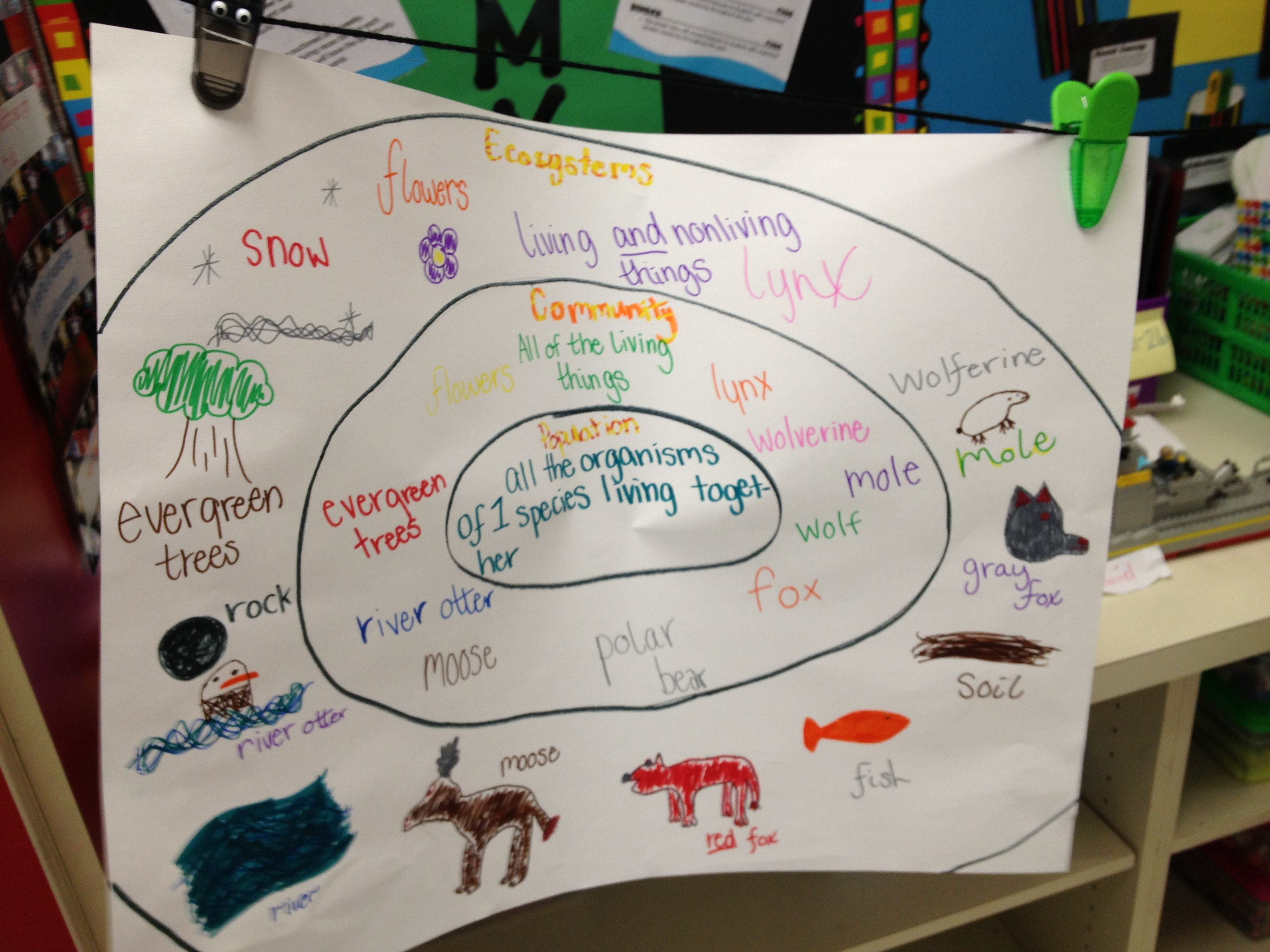 Ecosystems Chart
