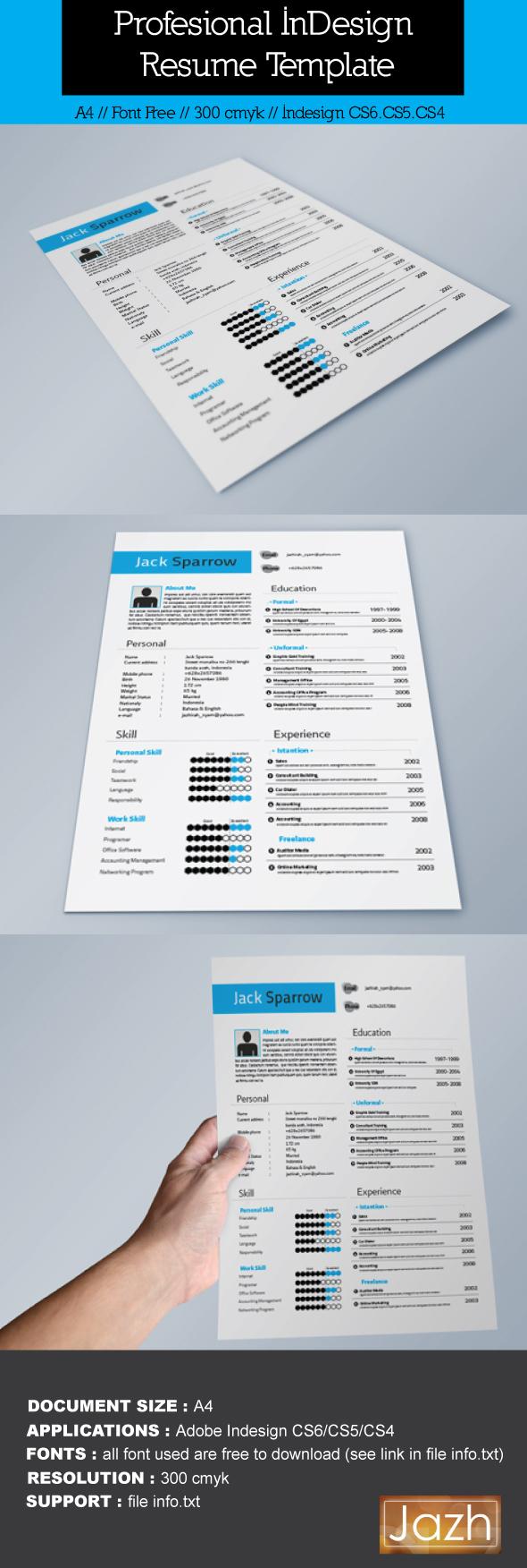 indesign resume cv templates free indesign resume resume template