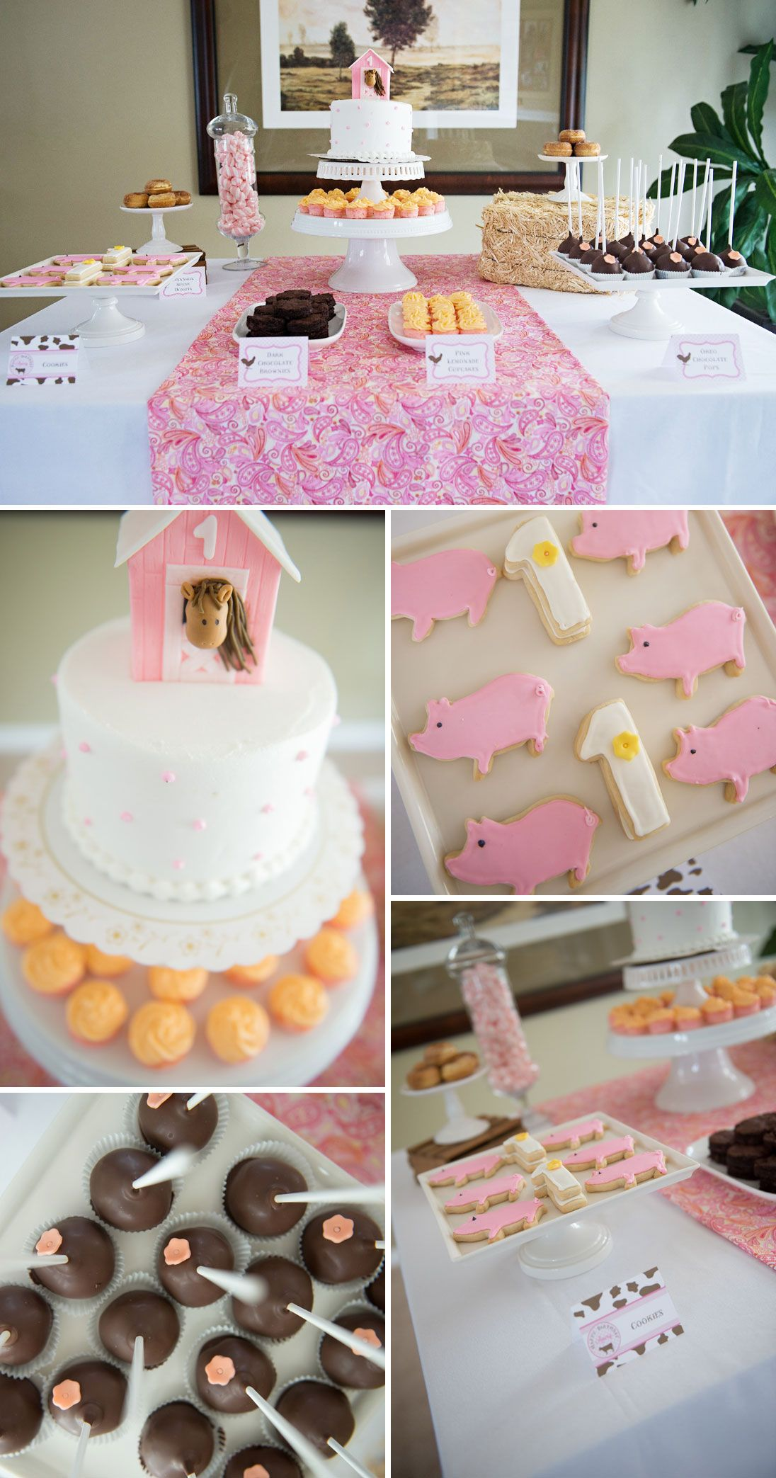 Avery S Farm Animal Themed Birthday Party