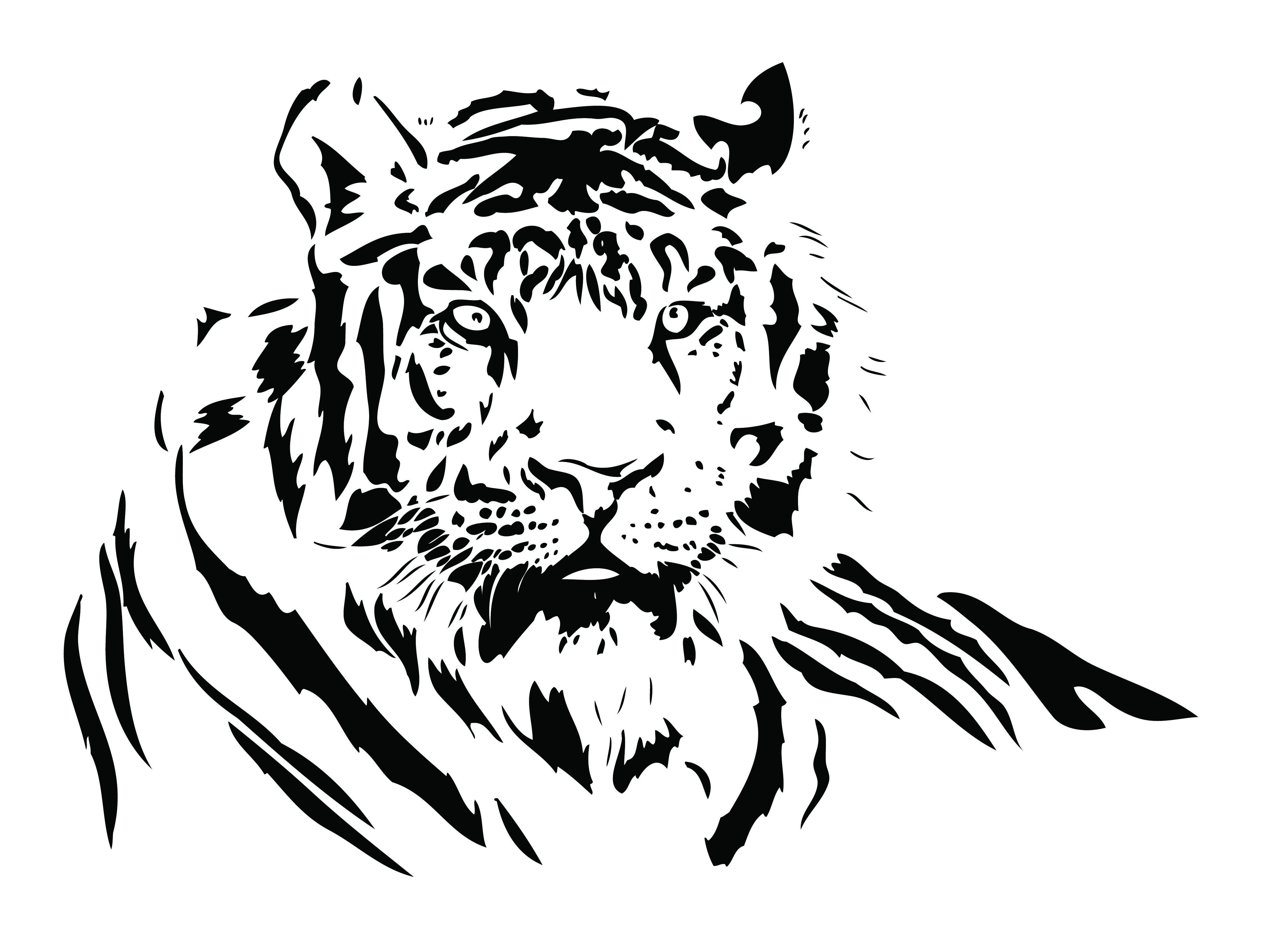 free vector Both black and white tiger vector Drawing