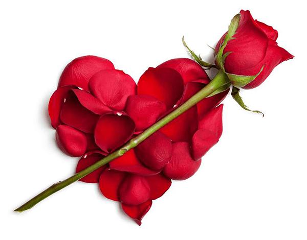 Red Rose Smileys, Emojis and Clip art