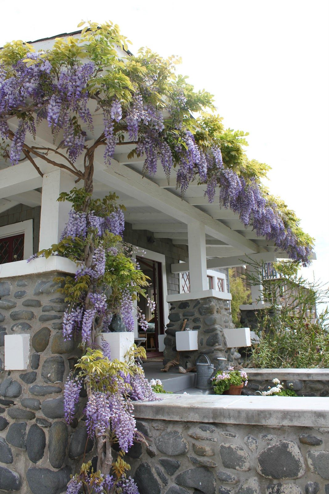 Wisteria on front Porch Porch Patio Deck Pinterest