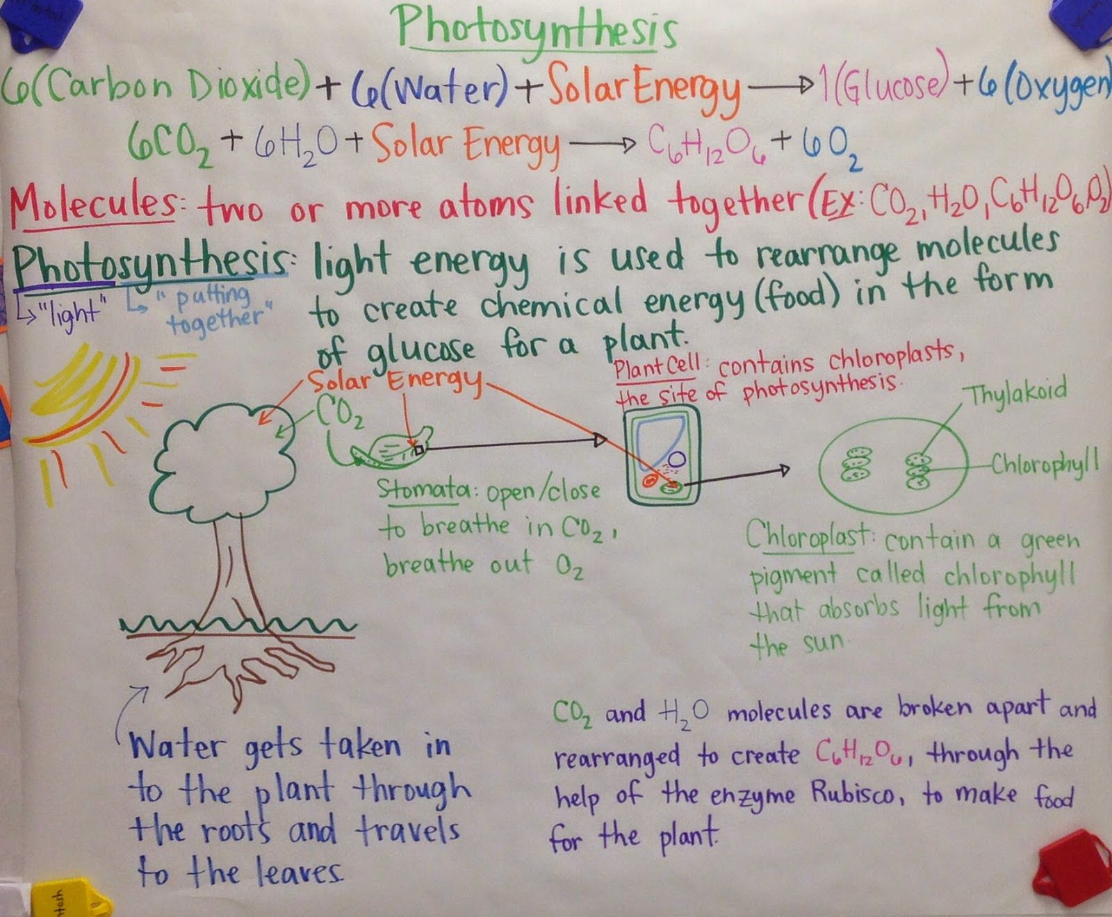 Energy Energy Transformation Worksheet Fun