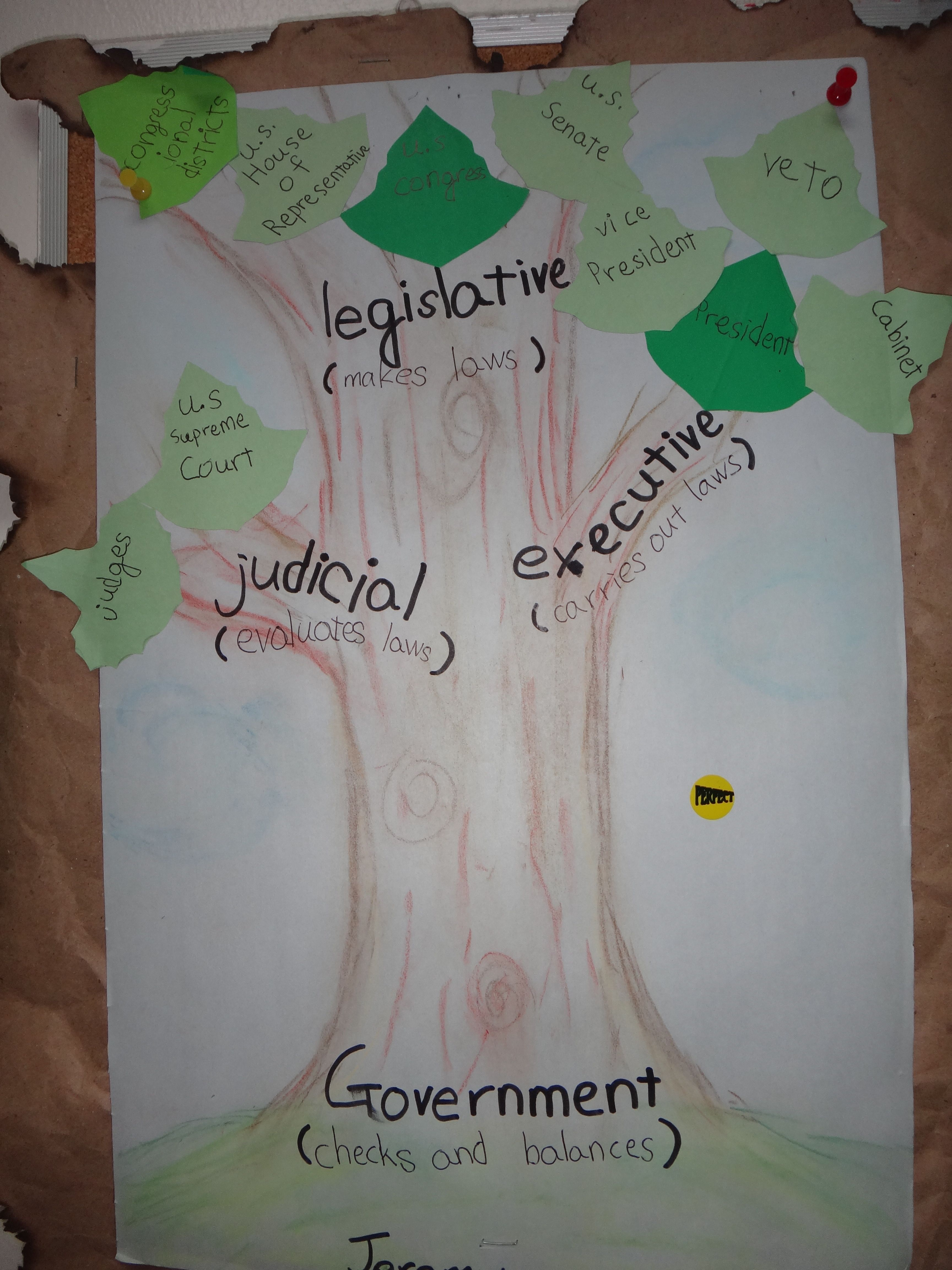 Branches Of Government A Poster With The Three Branches