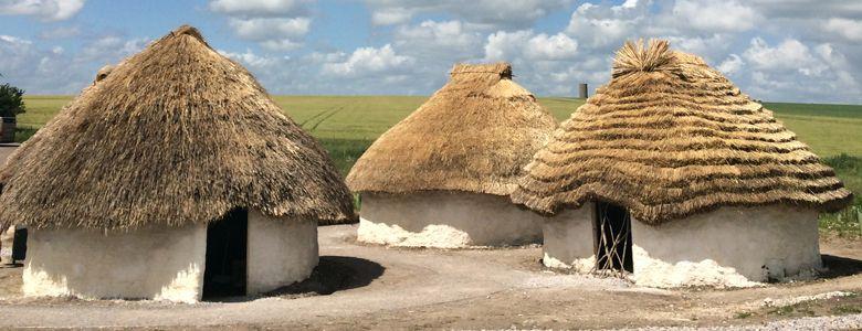 Neolithic Life- Madison McCormick